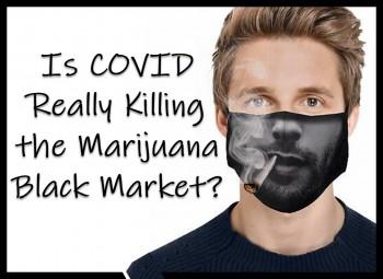 Is COVID Really Killing the Marijuana Black Market?