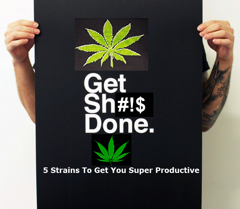 5 Strains To Keep You Super Productive