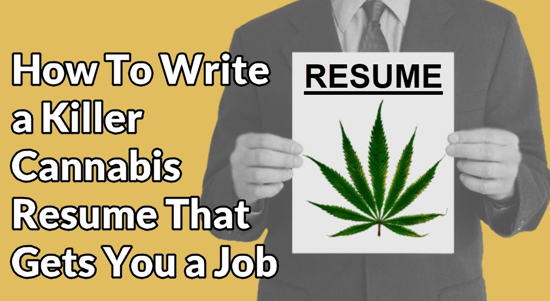 how to write a great resume for the cannabis industry