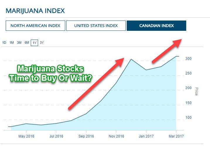 Marijuana Stocks: Time to Buy or Pump the Brakes