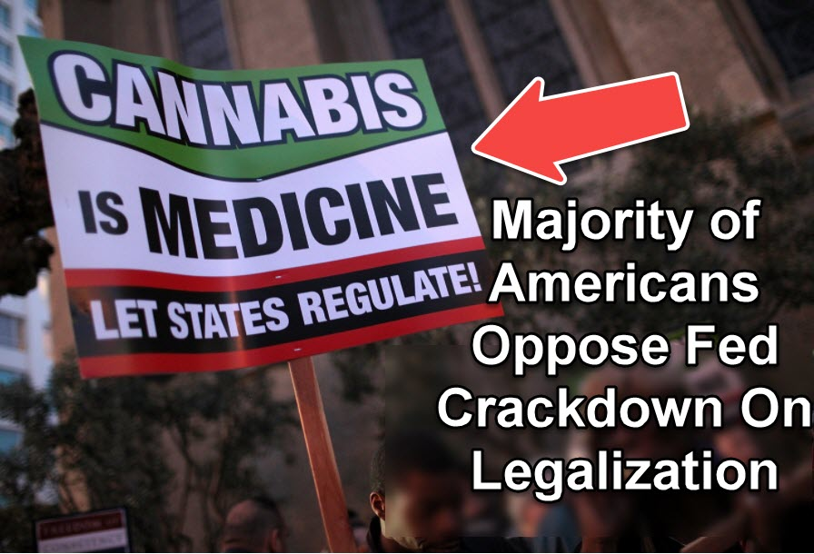 an opposition to decriminalization of marijuana Legislation to decriminalize possession and personal use markell signs delaware marijuana decriminalization passed despite significant opposition from.