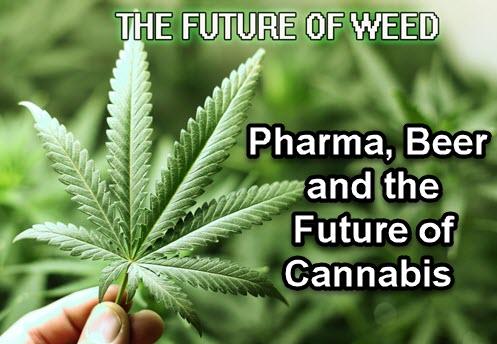 Canada Opens First Cannabis Hotel
