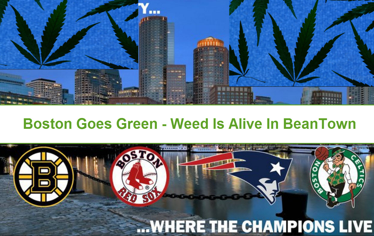 Image result for Boston Cannabis