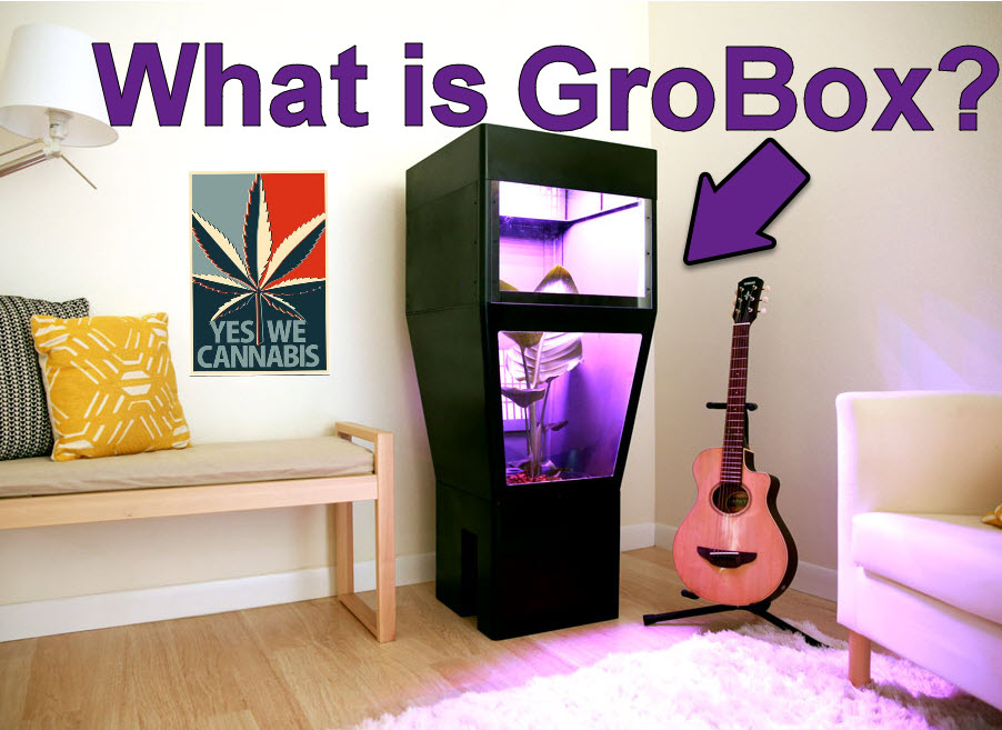 Grobox Your Weed In A Box