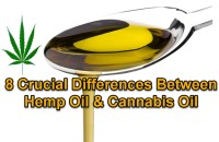 8 Crucial Differences Between Hemp Oil & Cannabis Oil