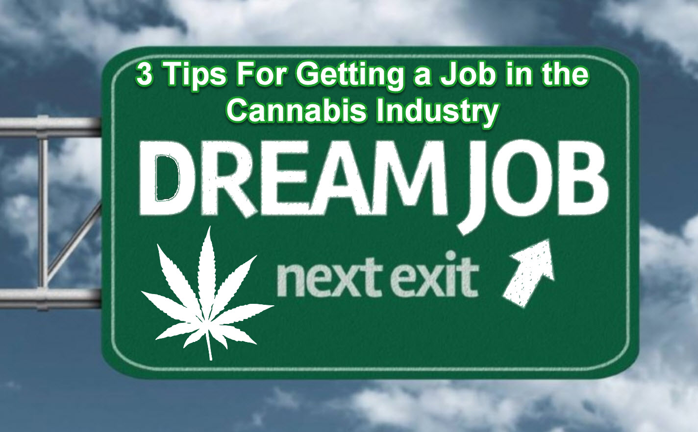 tips on getting a job tips on