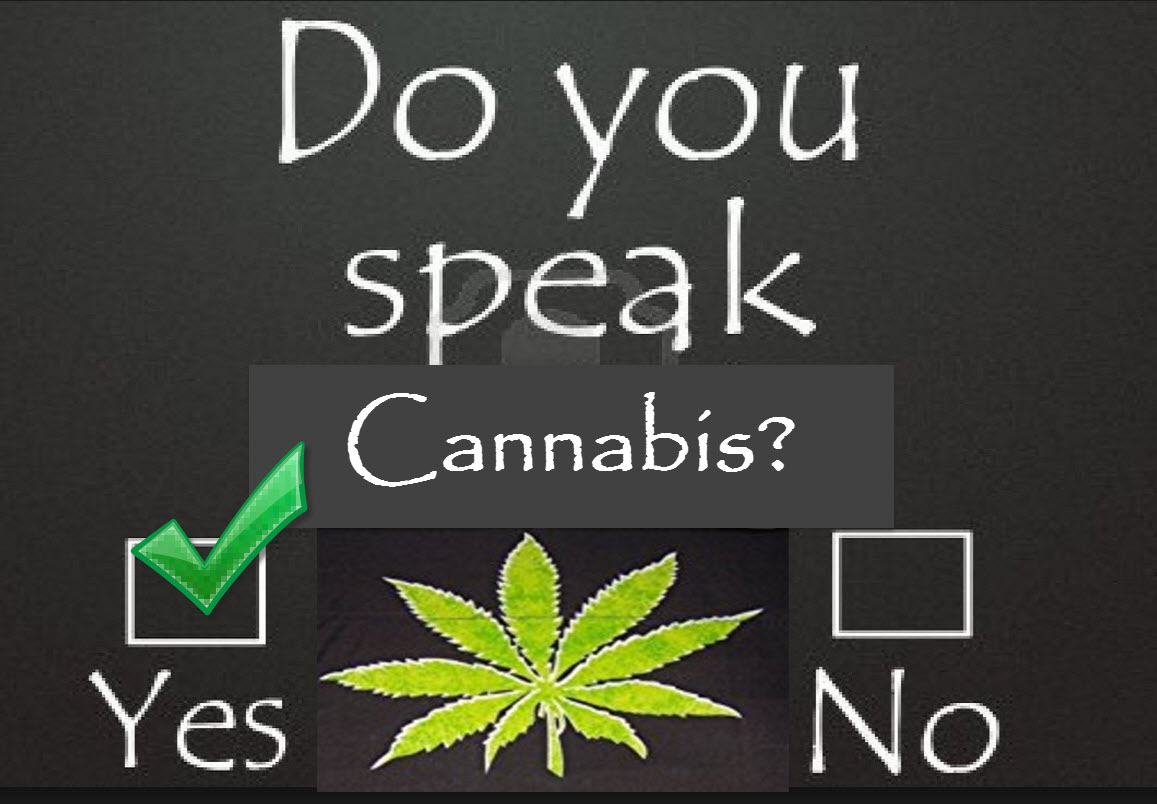Hello, Do You Speak Cannabis?