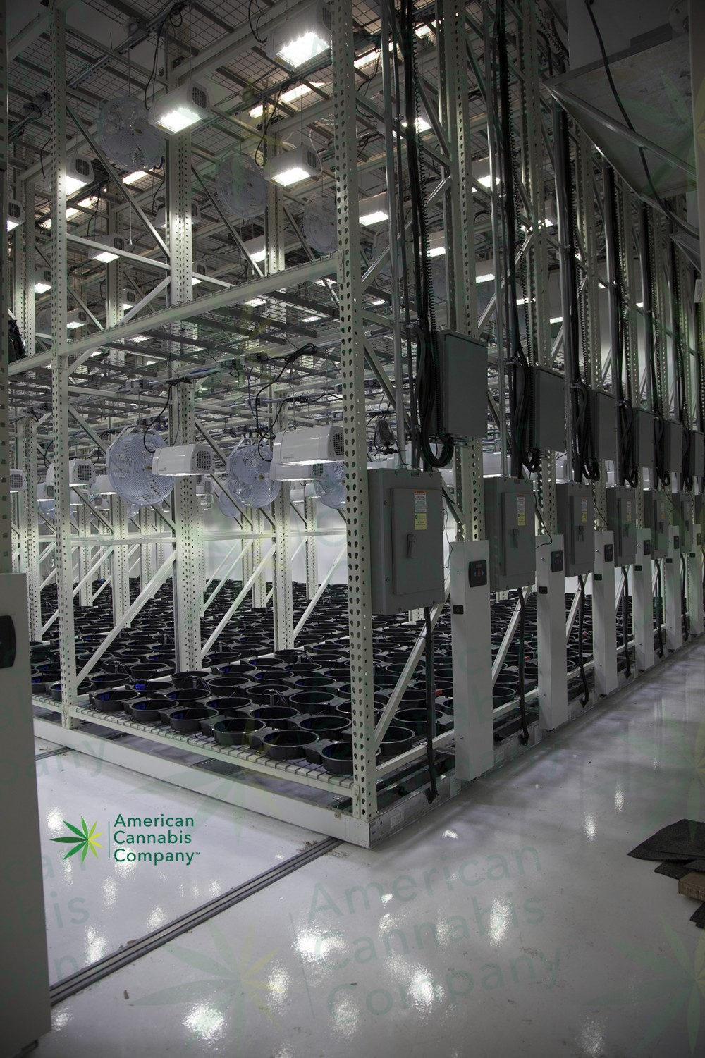 state of the art cannabis grow