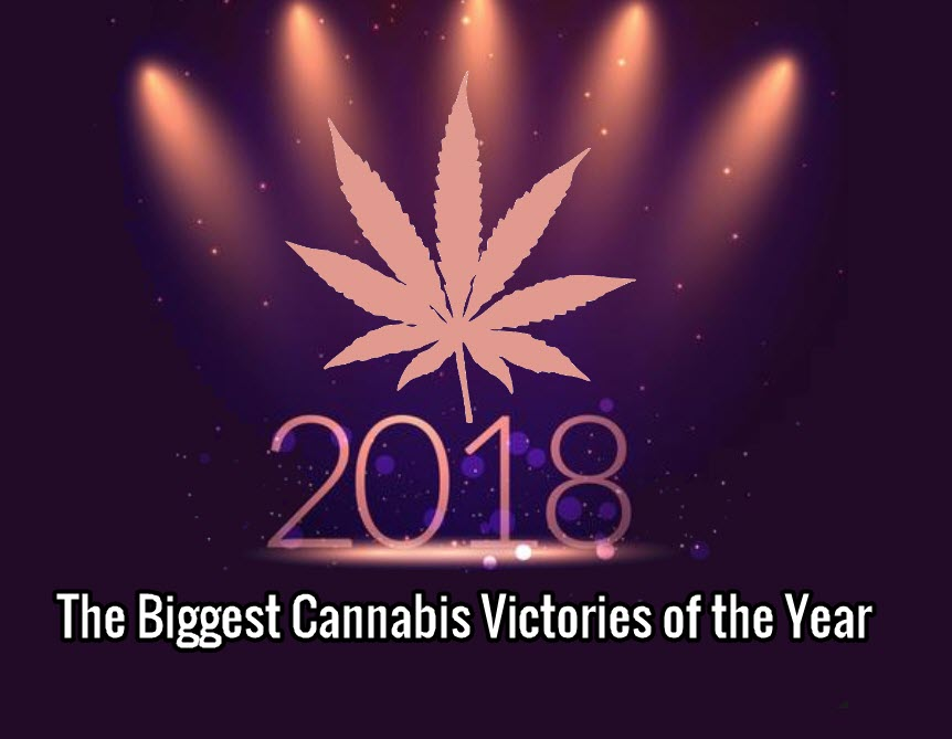 THE YEAR ON CANNABIS