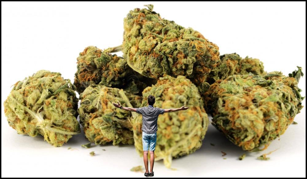 20 tons of marijuana