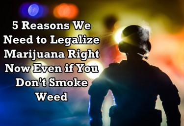 5 REASONS WE SHOULD LEGALIZE MARIJUANA
