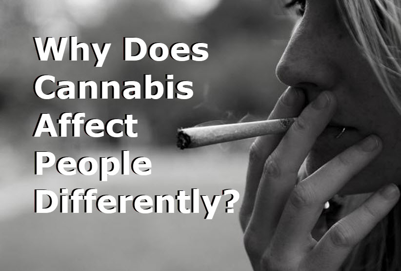 MARIJUANA EFFECTS US DIFFERENTLY