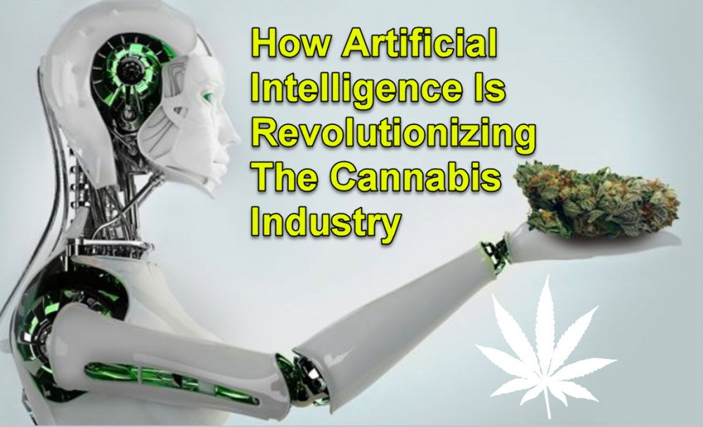 CANNABIS AND AI TECH