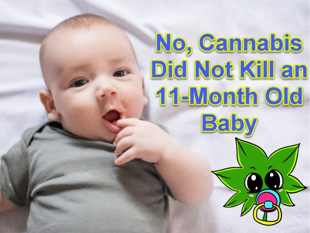 no cannabis did not kill an 11 month old baby. Black Bedroom Furniture Sets. Home Design Ideas
