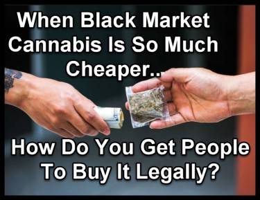 BLACK MARKET PRICES FOR CANNABIS