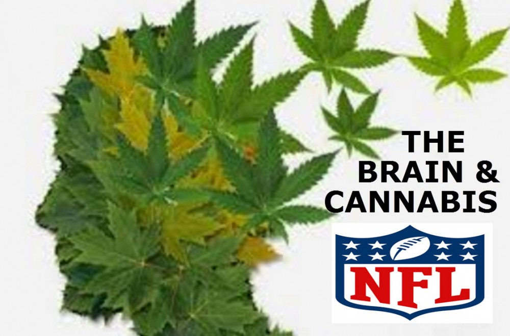 MARIJUANA FOR BRAIN INJURIES