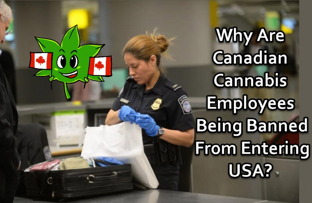 CANADIAN CANNABIS EMPLOYEES