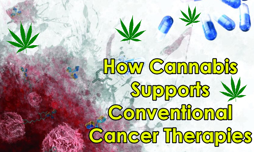 CANCER THERAPY AND MARIJUANA