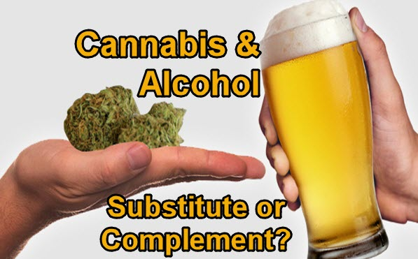 CANNABIS AND ALCOHOL STUDIES