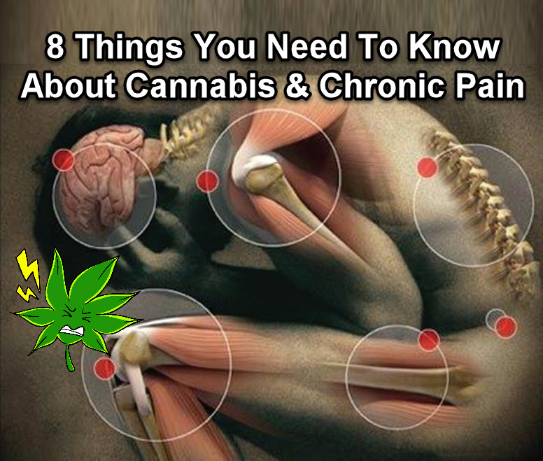 CANNABIS FOR CHRONIC PAIN GUIDE