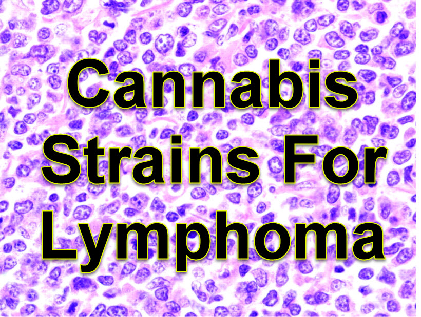 CANNABIS FOR LYMPHOMA