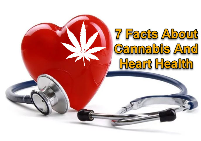 CANNABIS FOR HEART HEALTH