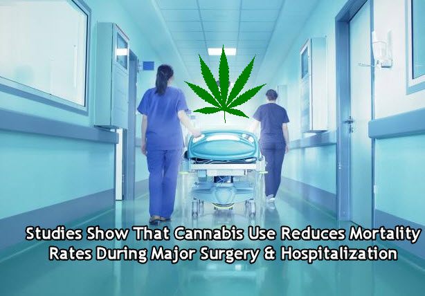 CANNABIS IN HOSPITALS