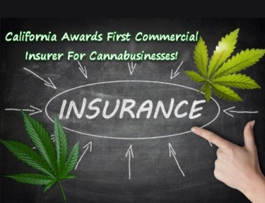 CALIFORNIA CANNABIS INSURANCE