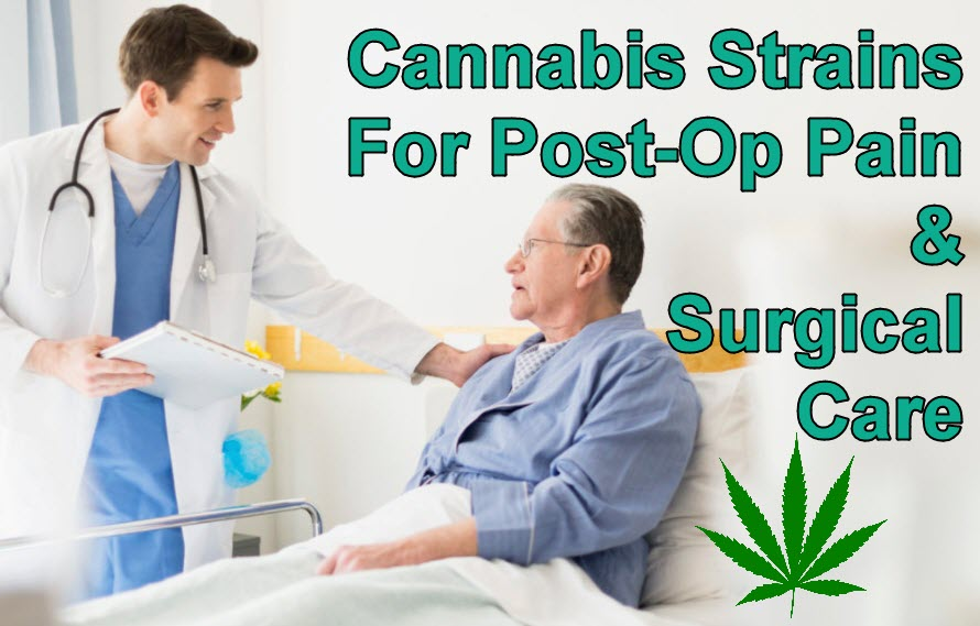 CANNABIS FOR POST OP