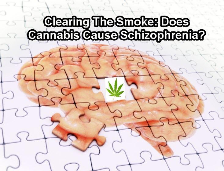 shizophrenia and cannabis strains