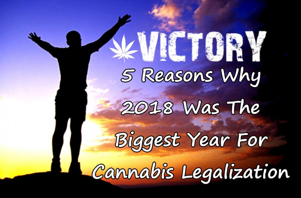 CANNABIS SUCCESS IN 2018