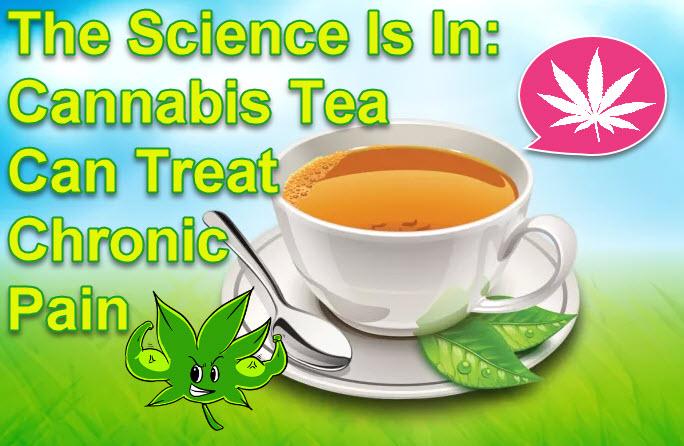CANNABIS TEA FOR CHRONIC PAIN