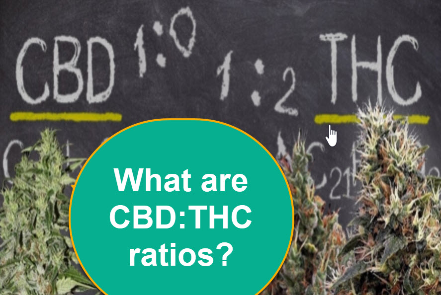 THC TO CBD RATIOS IN CANNABIS