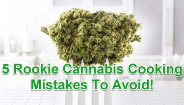 MISTAKES WITH COOKING FOR CANNABIS