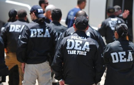 DEA AND CANNABIS
