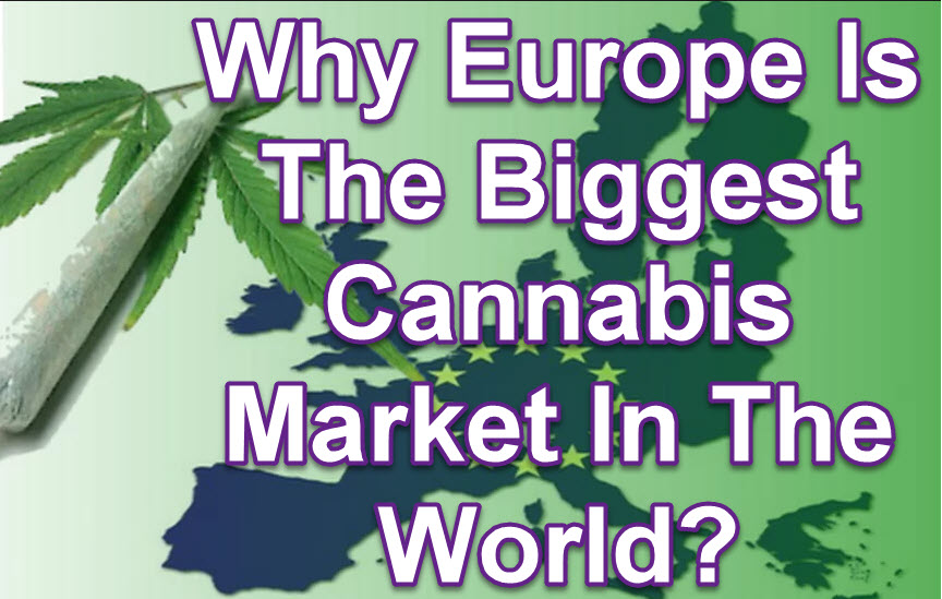 EUROPEAN CANNABIS MARKET