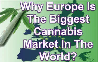 SIZE OF THE EUROPEAN CANNABIS MARKET