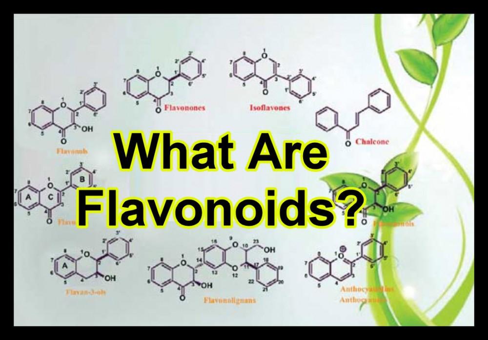 WHAT ARE FLAVANOIDS IN CANNABIS