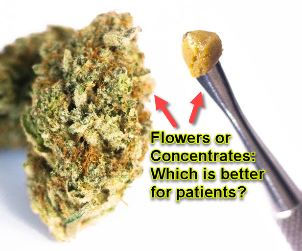 SHOULD YOU USE CANNABIS FLOWER OR CONCENTRATES