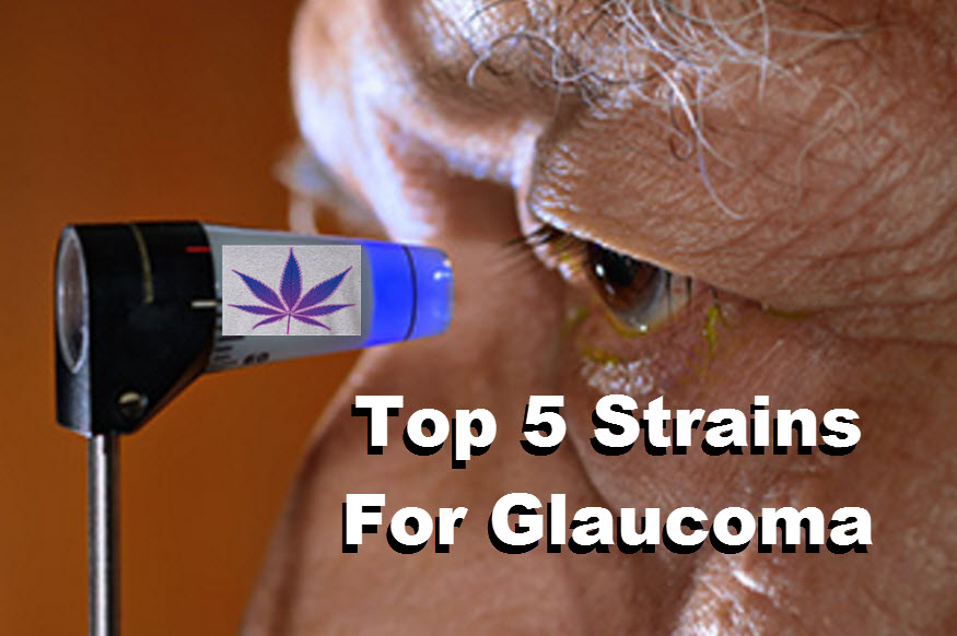 THC Eye-Drops for Glaucoma - The Next Big Thing or Green Rush Insanity?