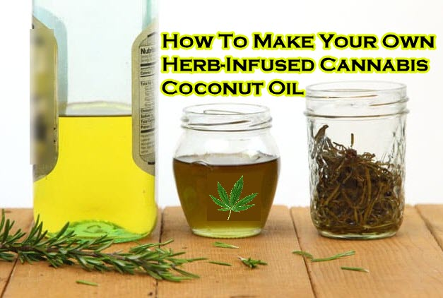 HERB CANNABIS COCONUT OIL