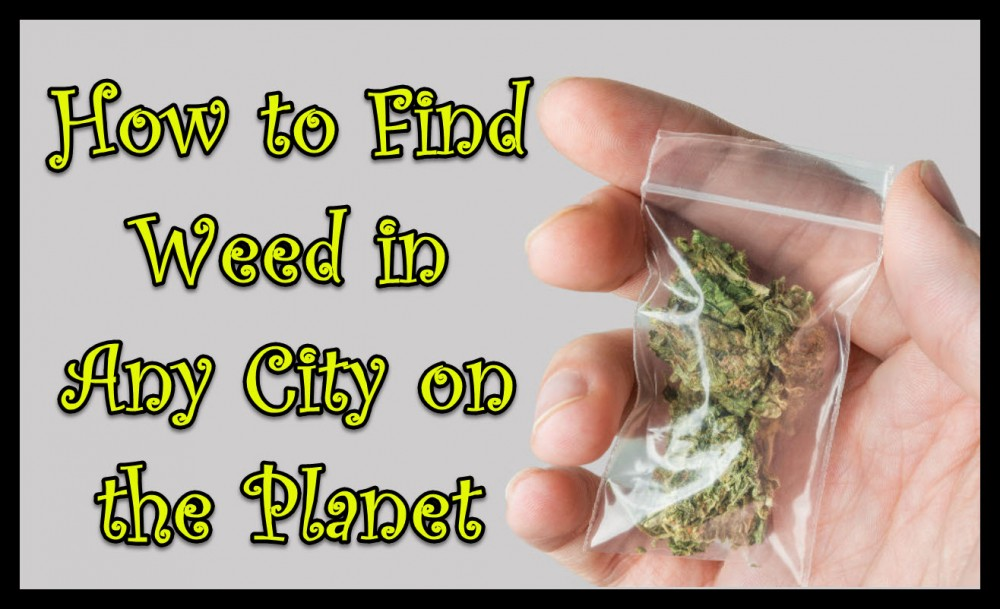 HOW TO FIND WEED ANYWHERE