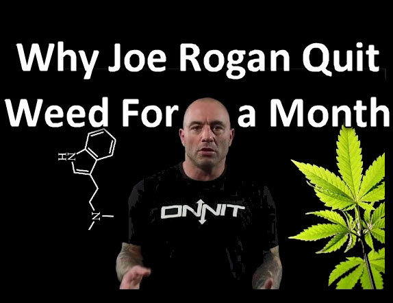 JOEROGAN - What is Cannabis Purging and How Do You Make Purge Cycles?