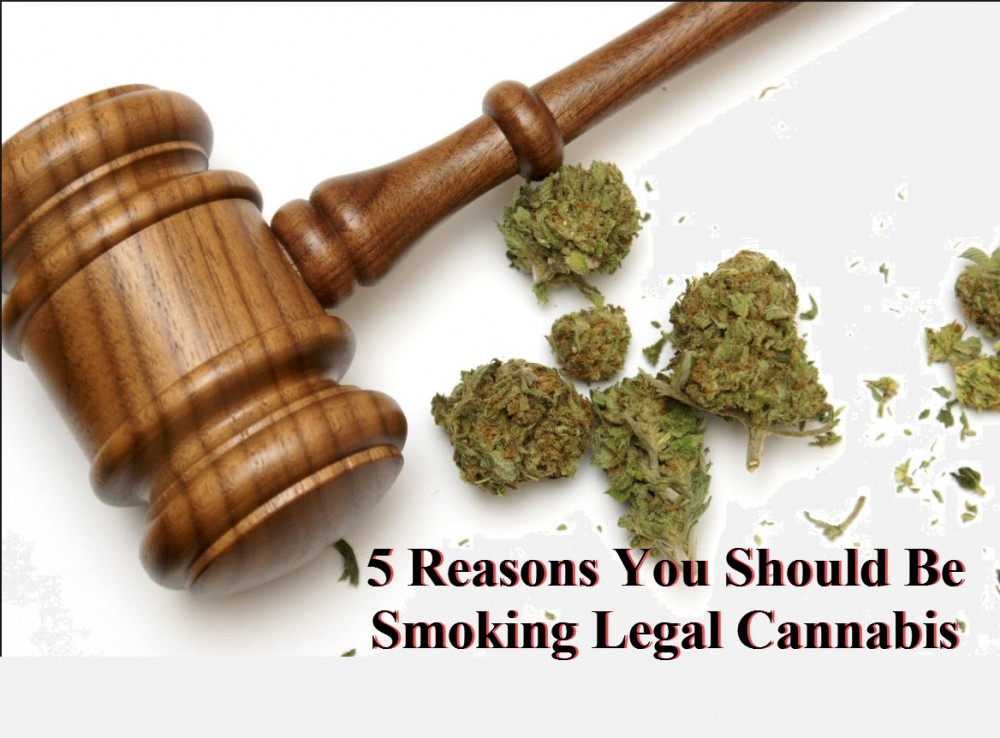 the reasons why hemp should be legalized While there are several reasons for legalizing cannabis, hemp, which comes from the same plant genus as marijuana, definitely has the most tangible benefits besides, the strains of marijuana used in industrial and consumer products contain such a small level of the intoxicating substance, the two.