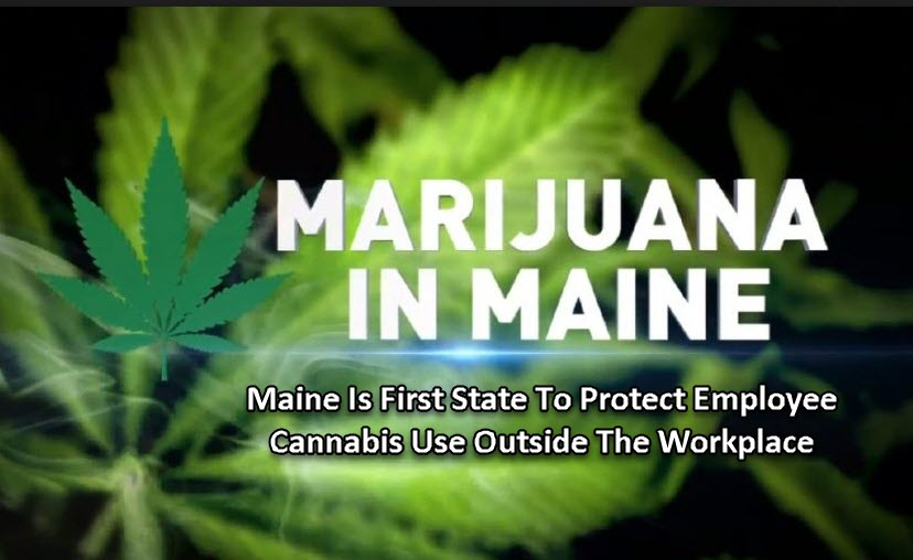 MAINE WORKERS RIGHT TO USE MARIJUANA