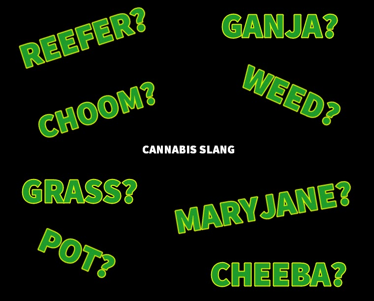 CANNABIS SLANG WORDS