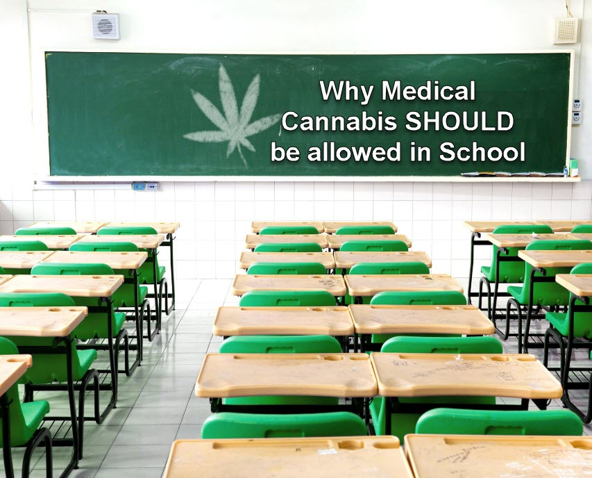 MEDICAL MARIJUANA IN SCHOOL