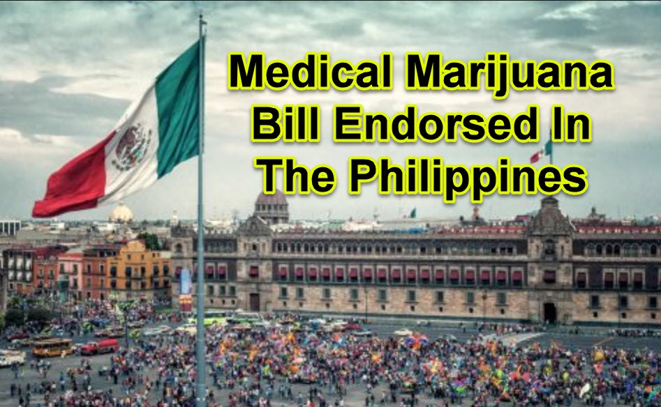 MEDICAL MARIJAUNA BILL