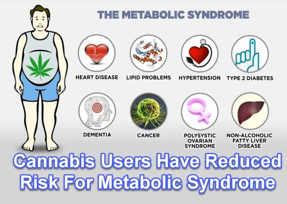 Medical Cannabis for Endocrine Disorders