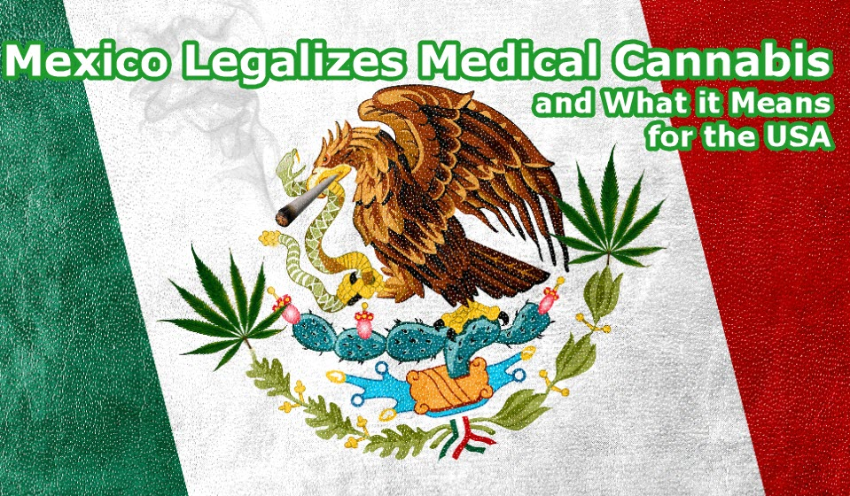 MEXICO ON LEGAL MEDICAL CANNABIS